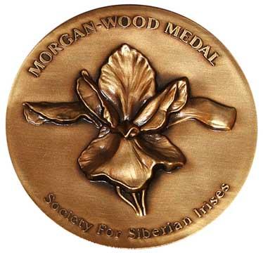Morgan-Wood Medal Siberian Iris (SIB)