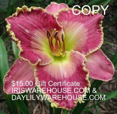 $15 gift certificate to Iriswarehouse & Daylilywarehouse