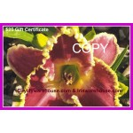 $25 Gift Certificate Daylily Photo